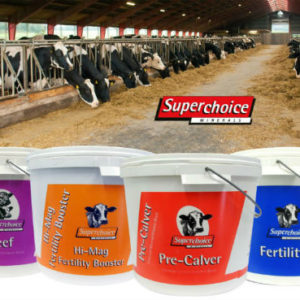 Ensure optimum health of your livestock this Spring with Superchoice Minerals