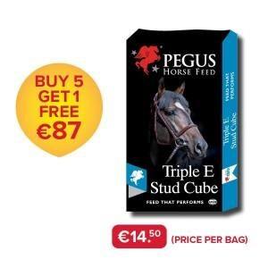 PEGUS Triple E Horse Feed