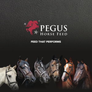 PEGUS Horse Feed Launches in 26 Dairygold Co-Op Superstores